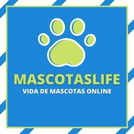 Mascotas Life